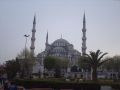 Turkey075
