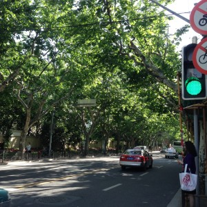 ¨Por favor, no useis vuestras bicicletas en el centro de la ciudad! dejad paso a los coches!¨