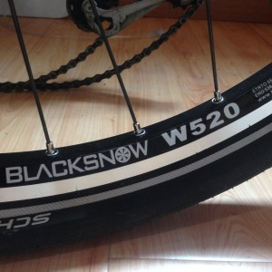 Blacksnow W520