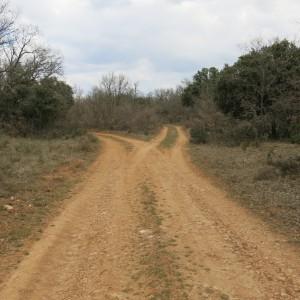 ruta des organizada